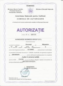 Auditor in Domeniul Calitatii